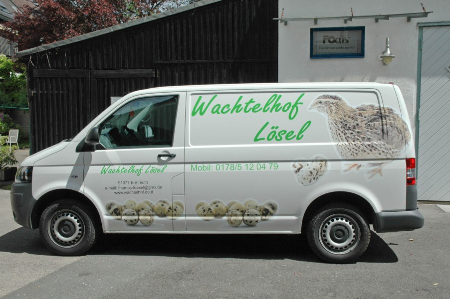 Fahrzeugbeklebung VW T5 Wachtelhof Lösel