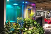 focus-folienbeschriftung-nuernberg-cubes-dichroitische-folie-design-offices-03