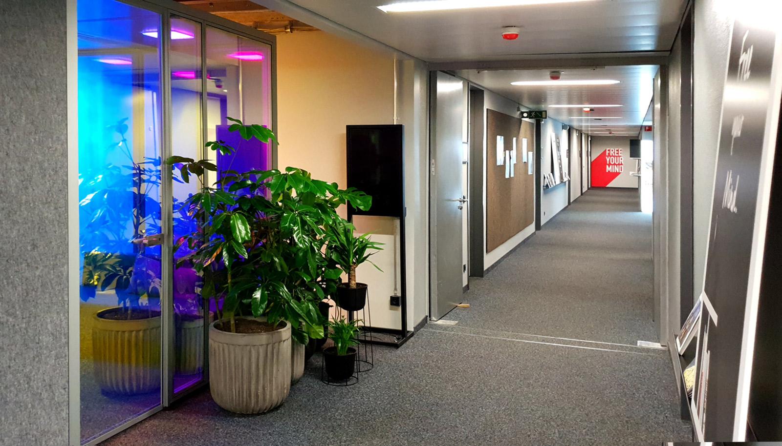 Dichroitischer Folie auf Glasscheiben an der Seite eines langen Büroganges