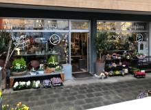 Schaufensterbeschrifung | Blumen Hautmann