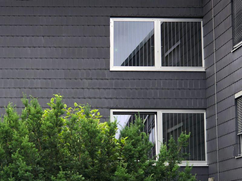 Vogelschutzstreifen an Fenstern der Augustana Hochschule